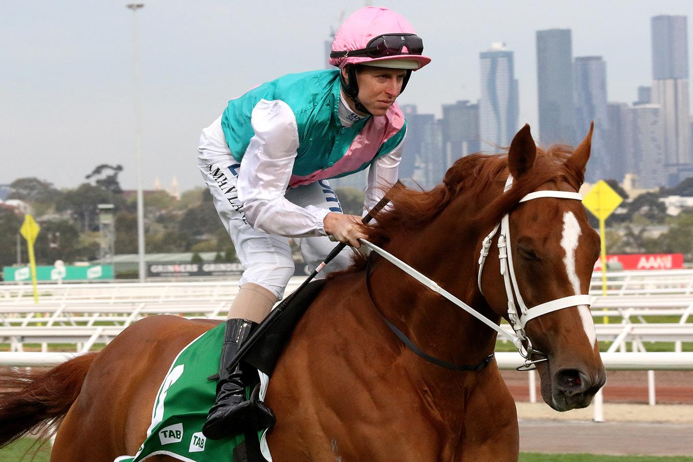 flemington melbourne cup form guide