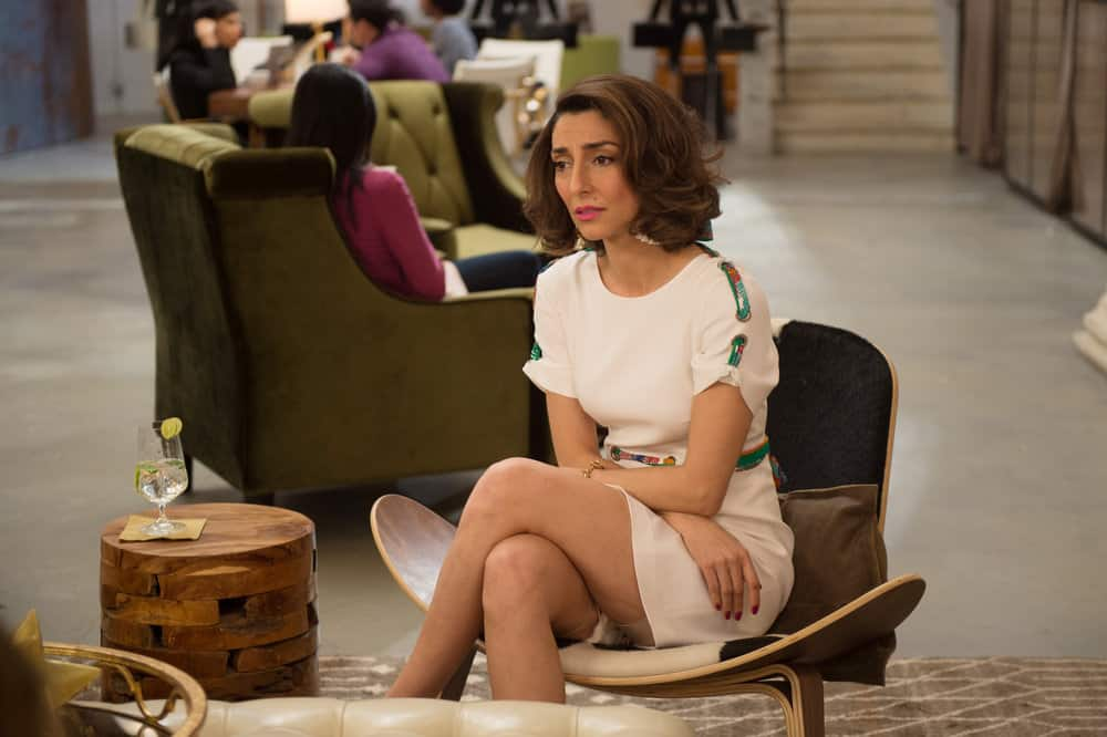 girlfriends guide to divorce season 3 episode 8