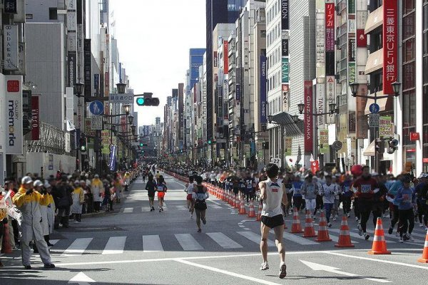 hire a guide in tokyo